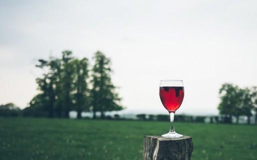 SA Wine - Glass Red