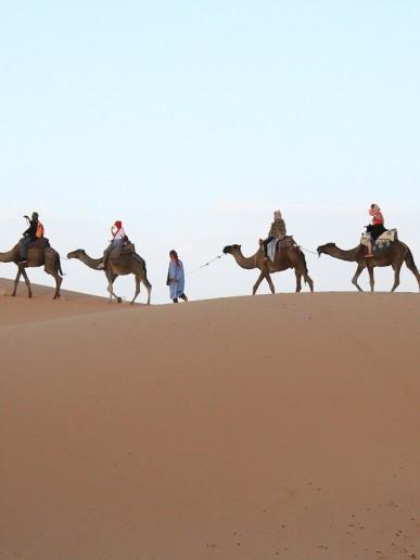 African Bucket List Desert