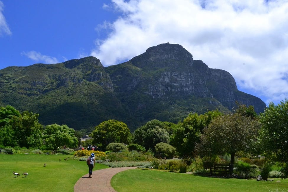 Things to Do in Cape Town2