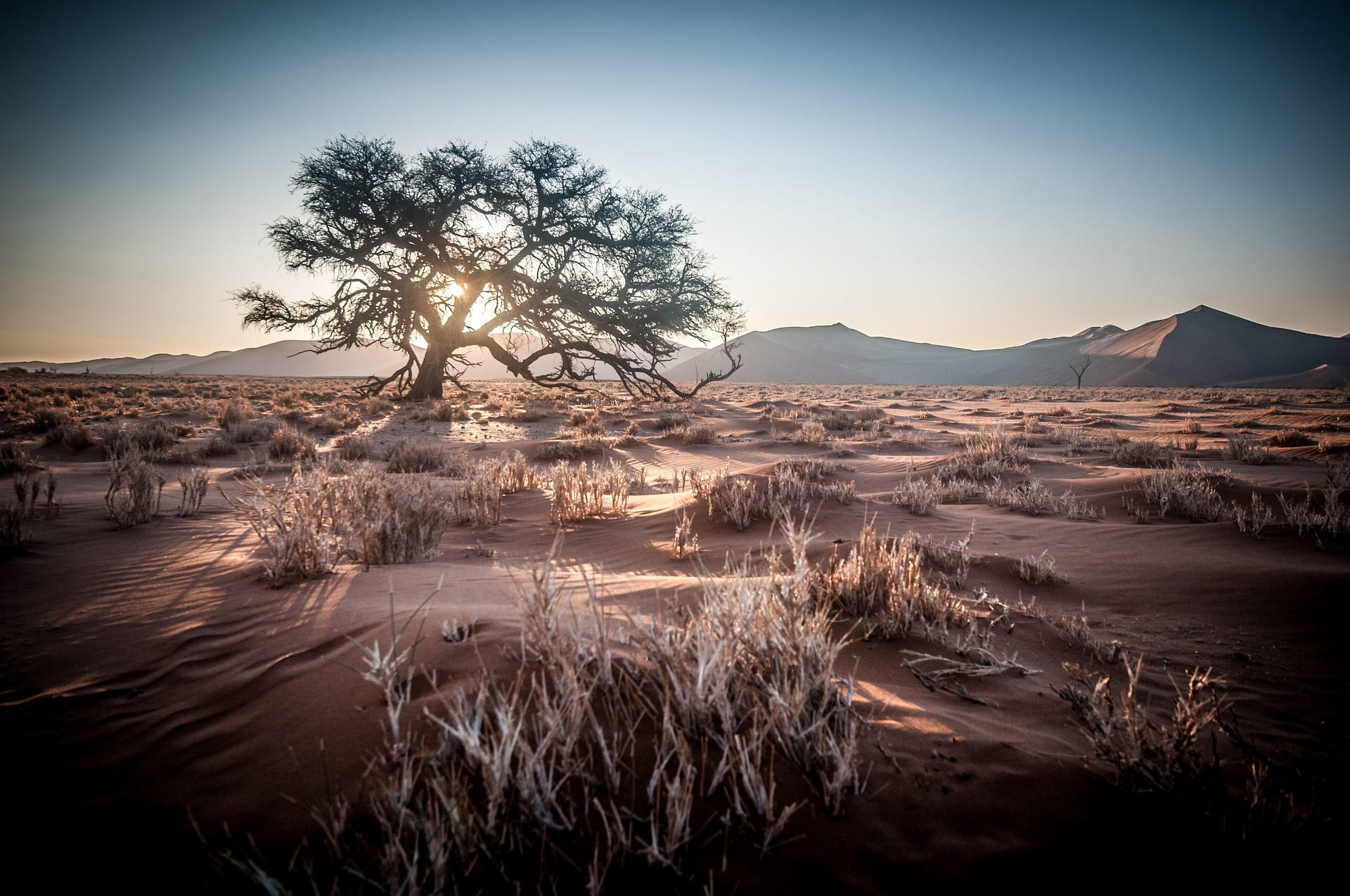 African Monsters Locations africa dry seson