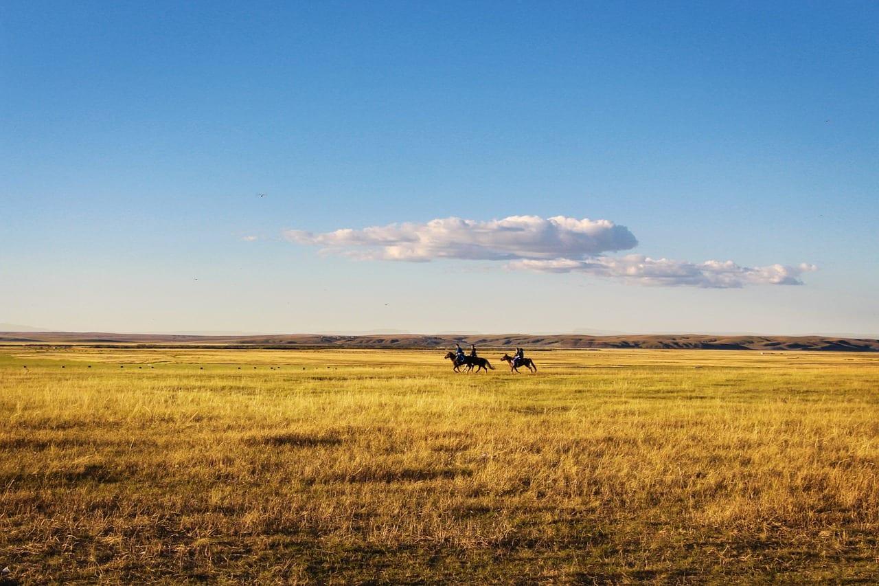 Botswana Travel Guide Image 7