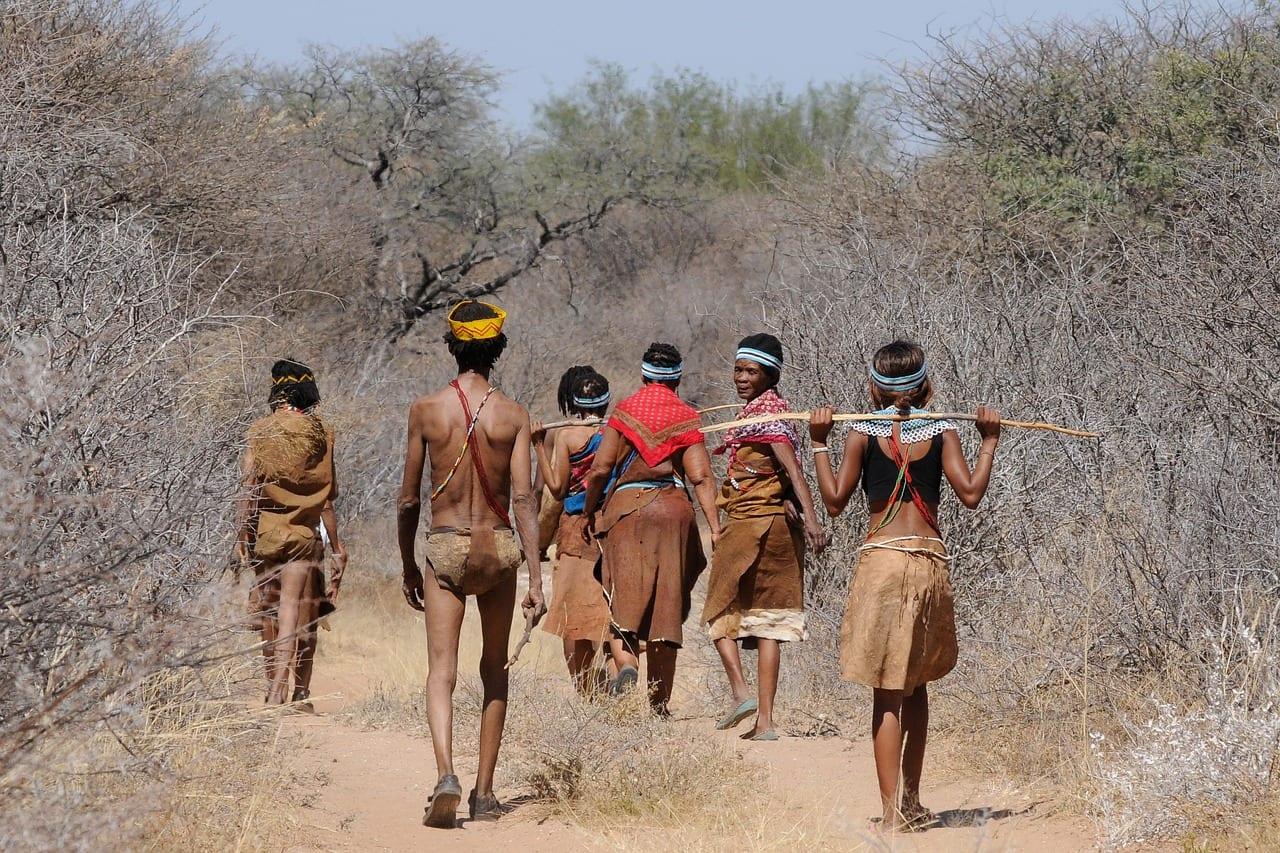 Botswana Travel Guide Image 9