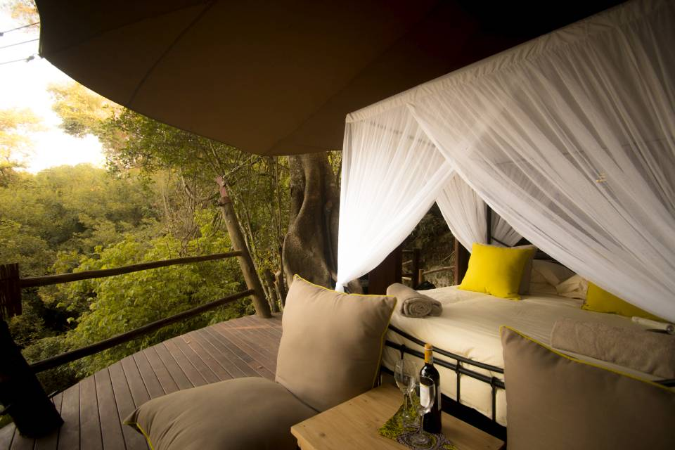 Safari Island Rubondo Island Camp Tree House