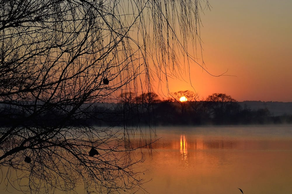 Safari Island sunrise 1