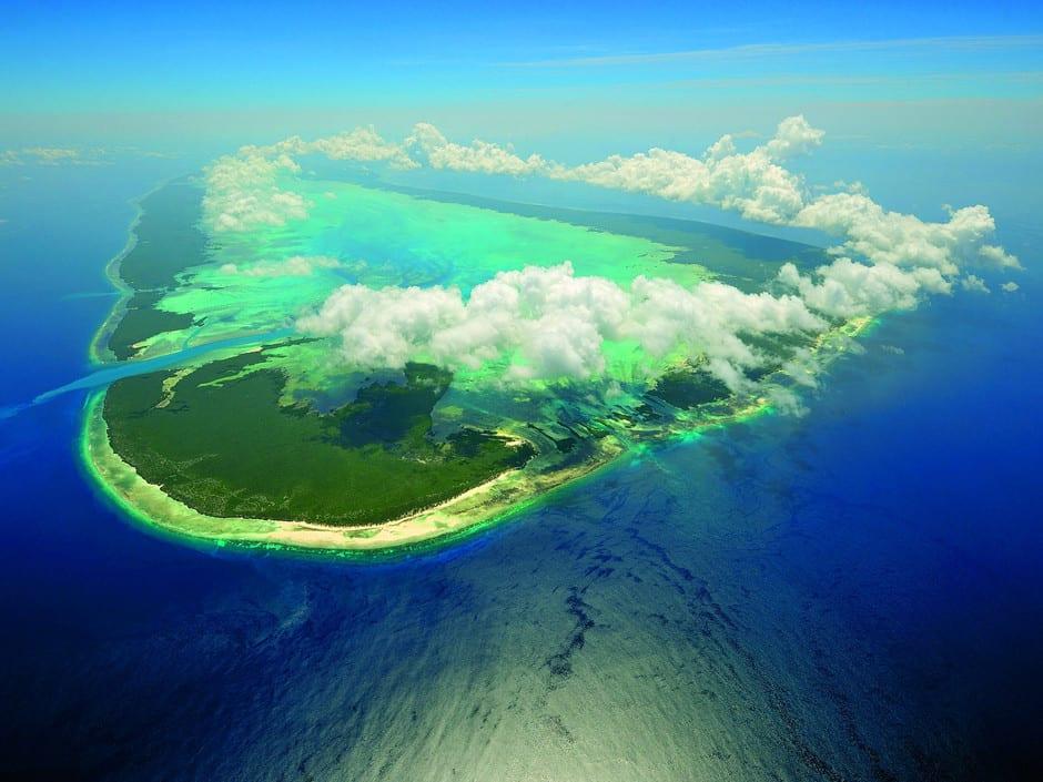 Seychelles aldabra