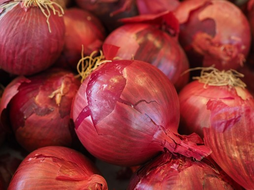 basic ingredients Onion