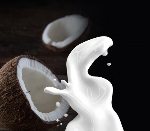 basic ingredients cocunut milk