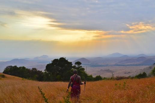 Travel Africa man in field