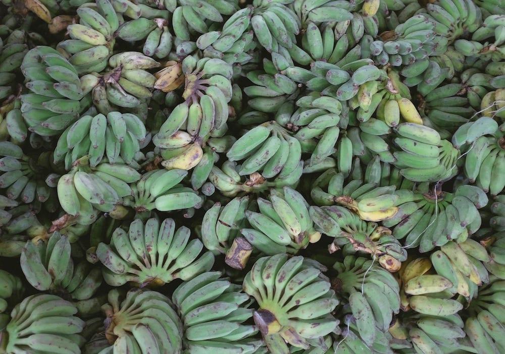 plantains pile