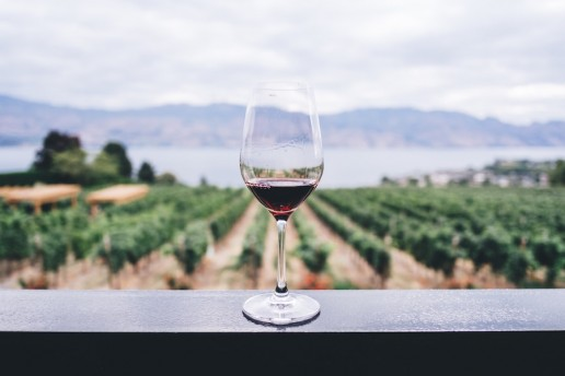Luxury Getaway Cape Winelands glass