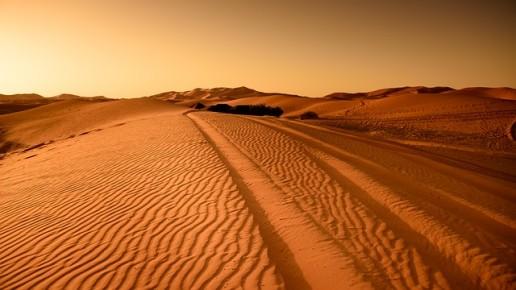 Morocco Travel desert