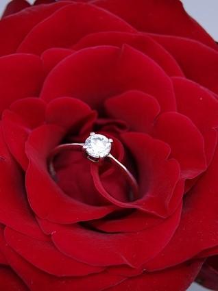 Nigerian Weddings Engagement ring