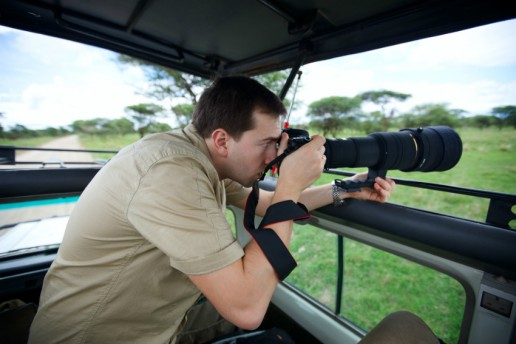 Safari Photography