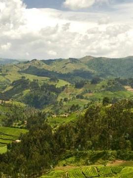 Roaming Rwanda Visit
