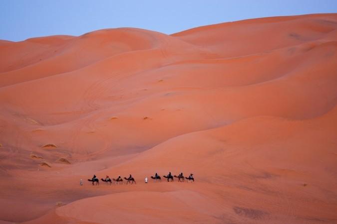 camel trekking morocco erg chebbi 1