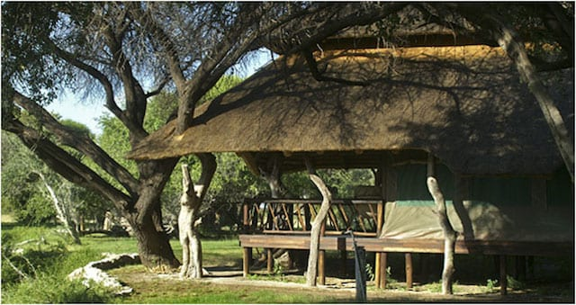 15 Things To Do In Botswana For The Whole Family edos camp in botswana