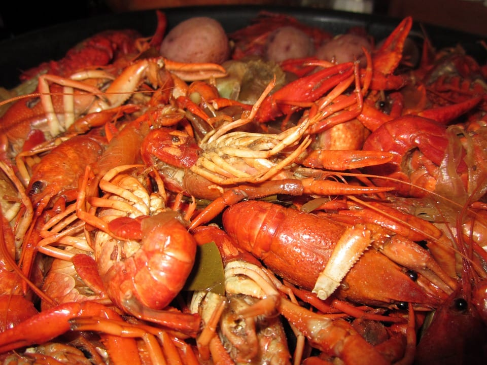 cajun food crawfish