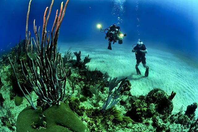 Scuba Diving in Africa divers