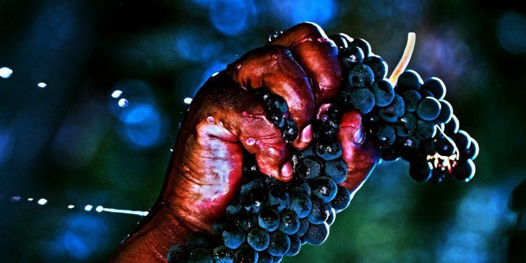Brown Estate Wines